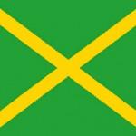Flag-grøn-gult-kryds-omstart-01